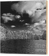 Vernon Lake Two Wood Print