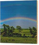 Vernon Marsh Double Rainbow Wood Print by Randy Scherkenbach