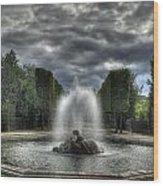 Versailles Fountain Wood Print