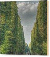 Versailles Promenade Wood Print