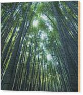 Vertical Bamboo Forest Wood Print by Aaron Bedell