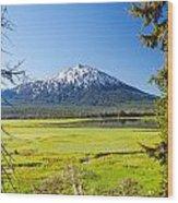 Vertical Mount Bachelor Wood Print
