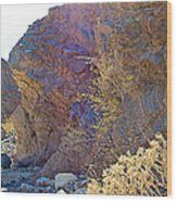 Vertical View Of Big Painted Canyon Trail In Mecca Hills-ca Wood Print