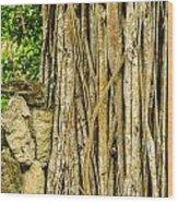 Vertical Vines Wood Print by Jess Kraft