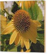 Vertical Yellow Flowers Wood Print