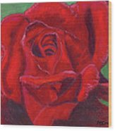 Very Red Rose Wood Print