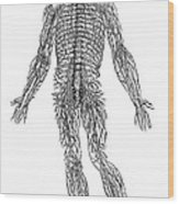 Vesalius: Nerves, 1543 Wood Print