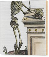 Vesalius: Skeleton, 1543 Wood Print