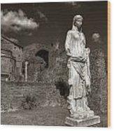 Vestal Virgin Courtyard Statue Wood Print