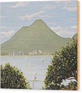 Vesuvius And Umbrella Pine Tree Wood Print