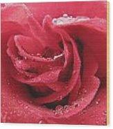 Veteran's Honor Rose Wood Print