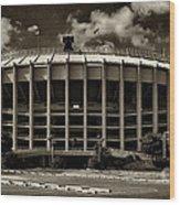 Veterans Stadium 1 Wood Print by Jack Paolini