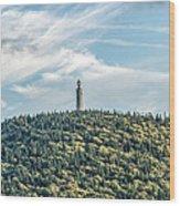 Veterans War Memorial Tower Wood Print