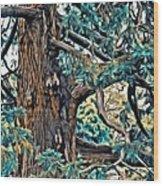 V.i. 0123 Wood Print