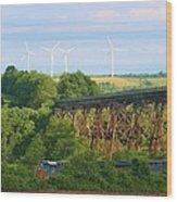 Viaduct And Train Wood Print