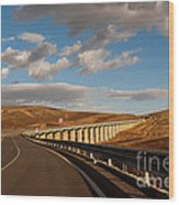 Viaduct In The Sicilian Countryside Wood Print