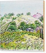 Viano Winery Martinez California Wood Print