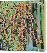 Vibrant Berries Wood Print