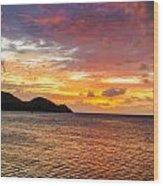 Vibrant Tropical Sunset Wood Print