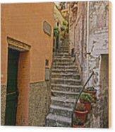 Vicolo Della Valle Riomaggiore Italy Dsc02537  Wood Print