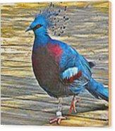 Victoria Crowned Pigeon In San Diego Zoo Safari In Escondido-california Wood Print