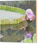 Victoria Lily Bloom 2 Wood Print