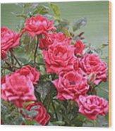 Victorian Rose Garden Wood Print