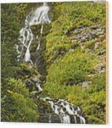 Vidae Falls 2 Wood Print