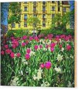 Vienna Residence Wood Print