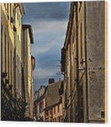Vienne France Wood Print