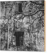 Vientiane Grey Wood Print