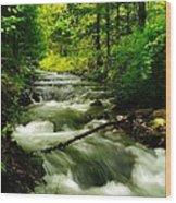 Viento Creek In June Wood Print