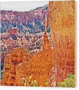 View At Beginning Of Navajo Trail In Bryce Canyon National Park-utah Wood Print