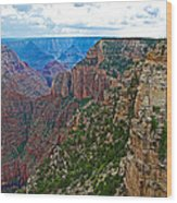 View Five From Walhalla Overlook On North Rim Of Grand Canyon-arizona Wood Print