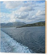 View From A Scottish Ferry Wood Print