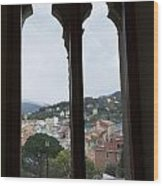 View From A Window Wood Print