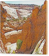 View From Above Capitol Gorge Pioneer Trail In Capitol Reef National Park-utah Wood Print