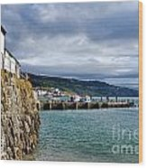 View From Back Beach - Lyme Regis Wood Print