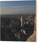 View From Basilica Of The Sacred Heart Of Paris - Sacre Coeur - Paris France - 011321 Wood Print
