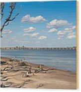 View From Big Talbot Island Beach Wood Print