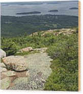 View From Cadillac Mountain - Acadia Park Wood Print