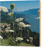 View From Cape Horn Wood Print by Cari Gesch