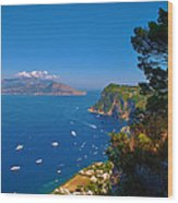 View From Capri Wood Print