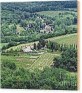 View From Castello Vicchiomaggio Wood Print
