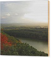 View From Chauncey Peak Wood Print by Stephen Melcher
