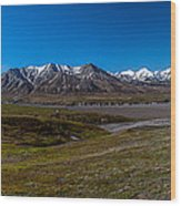 View From Eielson Wood Print