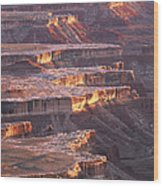 View From Grandview Point Canyonlands Wood Print
