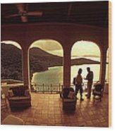 View From Hawks Nest Villa In Virgin Islands Wood Print