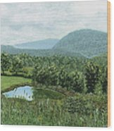 View From Kent St. Wood Print