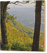 View From Lookout Mountain Wood Print